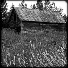 Old Tool Shed On Hwy 105 - Ansel Adam Style