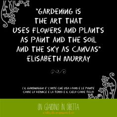 Gardening is the art that uses flowers and plants as paint and the soil and the sky as canvas...Elisabeth Murray #gardening