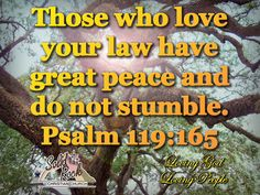Memory Verses Archives - Page 68 of 188 - Solid Rock Boca Psalm 119, Psalms, Inspirational Verses, Memory Verse, Bible Verses, Law, Places To Visit, Love You, Peace