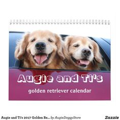 Augie and Ti's 2017 Golden Retriever Calendar by #AugieDoggyStore. SALE! Take 50% off through October 17th with code ZAZHEADSTART