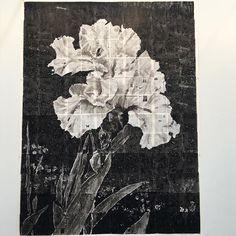 prabalgurung: William Kentridge.  Brilliant provocative & moving.  I am in love.  #williamkentridge #frieze #newyork Contemporary Printmaking, Contemporary Art, Sketchbook Tour, Plant Drawing, Animation Film, Stop Motion, Line Art, Still Life, Doodle