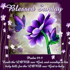 Good Morning sister and all,have a lovely Sunday,God bless,xxx Take care and keep safe,❤❤❤☀💒 Blessed Sunday Quotes, Sunday Prayer, Sunday Morning Quotes, Have A Blessed Sunday, Good Night Prayer, Good Morning Sister, Good Sunday Morning, Sunday Love, Psalms
