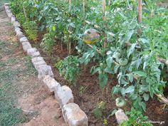 Κατασκευή Λαχανόκηπου-Παναγιώτης Μανίκης Athens, Stepping Stones, Health, Outdoor Decor, Nature, Plants, Gardening, Fitness, Stair Risers