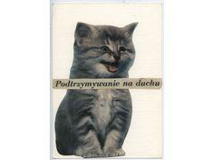 Wisława Szymborska, to Gizela Szancerowa, MOCAK Archive Dell Anima, Collage Art, Collages, Cats, Animals, Archive, Google, Gatos, Animais