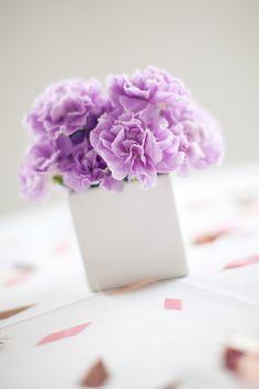 purple carnations.