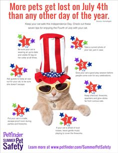Keep Your Cat Safe This 4th of July #cats #cat safety
