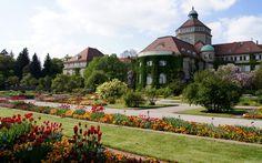 Ботанический, Сады, Германия, Мюнхен