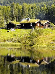 homeintheforest: Cabin by strømstad on Flickr.