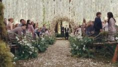 Twilight wedding...the picture does not do it justice! the whole thing was SOOOO pretty.