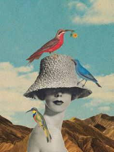 Birdland by Sammy Slabbinck ( Collage - Art - Cut & Paste - Mixed Media - Design )