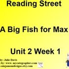 This is a SmartBoard activity to accompany Scott Foresman's Reading Street Unit 2 A Big Fish for Max. This is a 5 day lesson with multiple activities for each day that include high frequency words want & good, vowel sound as in ball, sh & th blends, journal activities, games, videos and much more. This lesson also includes learning about how families work together and how families play together. There is also lessons on nouns, and main idea. This follows the Reading Street lesson exactly.