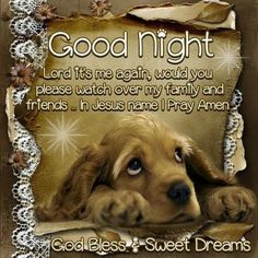 Good Night, God Bless!! I wish you a Goodnight My Beautifiul Boo Bear Sweetdreams I wish I was with you today it was kinda boring I atleast clean house anyway I can't wait to be with you and snuggle ya and luvs ya ! I luvs ya baby boo I miss U ! I'll see ya in your dreams and your in mine ! I pray for u and your family we'll here baby all I can do is this xoxoxo and hope and pray when I get to see ya again and spend our life as husband and wife luvs you always your man Courtney Bellah JCB…