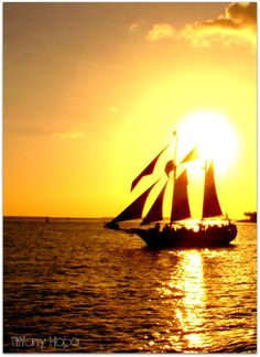 Key West, FL- BEEN THERE, DONE THAT, WANT TO DO IT ALL OVER AGAIN!