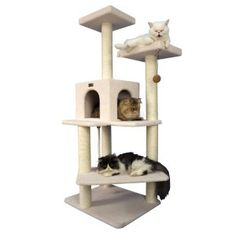Armarkat Cat Tree Pet Furniture Condo - we have this one and my two cats love it