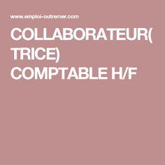 COLLABORATEUR(TRICE) COMPTABLE H/F