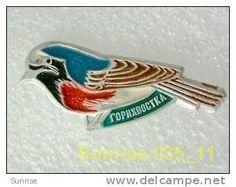 animals: birds redstart - Phoenicurus / old soviet badge _35_an0047