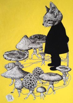 emsevolution:    OMG, A kitty in a suit and a bunch of walking mushrooms!! :3