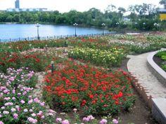 O Σωτήρης Δανέζης από το μέτωπο της Ουκρανίας: Ντονέτσκ, η πόλη με το 1 εκατ. τριαντάφυλλα [ΕΙΚΟΝΕΣ]