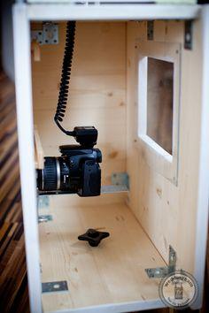 Auf der Rückseite befindet sich eine Plexiglasscheibe, um den Status der Kamera einzusehen.