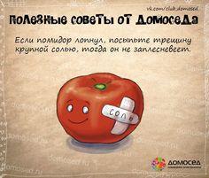 рецепты в картинках на все случаи жизни: 10 тыс изображений найдено в Яндекс.Картинках