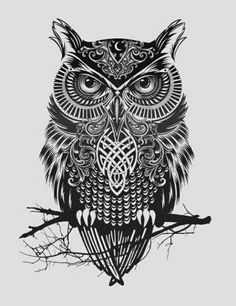 owl drawing zentangle - Google Search