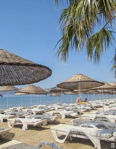TRAVEL GUIDE Bodrum: Bodrum, Turkey & # at 25 things to do - best beach in Bodrum town and p Turkey Resorts, Turkey Destinations, Turkey Vacation, Turkey Travel, Turkey Places, Resort Interior, Sea Photography, Holiday Resort, Night Life