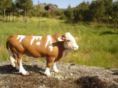 Portugal, Cow, Animals, Animales, Animaux, Animal, Animais