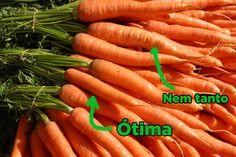 Escolha as cenouras menores. | 14 dicas para não errar ao escolher vegetais na feira ou mercado novamente