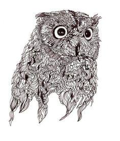 Nice owl pen sketch