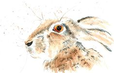 Hare Print from Original Watercolor, Rabbit Portrait Watercolor Art Print, Tan Grey Pen and Ink Wall Art Decor, Jackrabbit Home Decor Art
