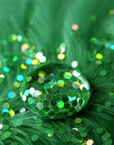 verde---➽viridi➽πράσινος➽green ➽verde➽grün➽綠➽أخضر ➽зеленый World Of Color, Color Of Life, Color Of The Year, Green Day, Go Green, Green Colors, Green Zone, Spring Green, Bright Green
