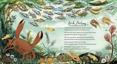 Another lovely illustration by Mark Hearld for A First Book of Nature - see the full gallery at http://www.booktrust.org.uk/books-and-reading/children/illustrators/illustrators-gallery/47