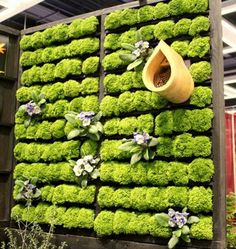 Combine several different wooden pallets to create a grand living wall planter Cool DIY Green Living Wall Projects For Your decorating before and after designs interior Jardin Vertical Diy, Vertical Gardens, Vertical Planting, Living Wall Planter, Living Fence, Living Walls, Herb Garden Pallet, Pallets Garden, Pallet Gardening