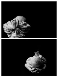 http://www.feliciamcternanphotography.com - love these dramatic newborn details shots on black background