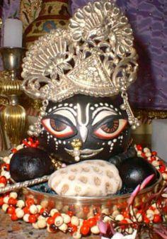 Beautiful image of Vishnu Shaligram.