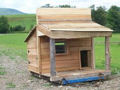 how to build a shed for dummies