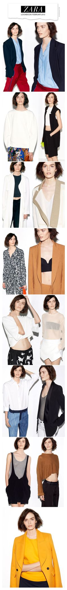 Zara Lookbook Woman Februar 2013