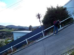 Thought to be The Steepest Street in the World, Dunedin, New Zealand