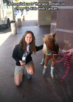 Can I just point out that this pony is wearing trainers.