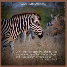 Don't wait for someone else to lead you to your right life. that privilege - and responsibility - is yours alone. ~Martha Beck