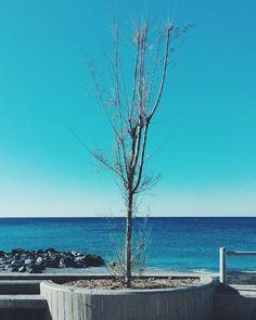 Rewind. #unangeloinviaggio  Edit with @vscoG3  #italia #italy #calabria #vsco #vscocam #vscoitaly #landscape #landscapephotography #landscape_captures #landscape_lovers #amazing #awesome #bestoftheday #beautiful #beautifuldestination #photo #photography #photooftheday #travel #traveling #trip #adventure #nature #naturelovers #sea #exploring #exploringtheglobe #igersoftheday