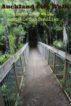 Auckland City Walk - 2.5km, 1 hour loop, suitable for all fitness levels, families and pushchairs.
