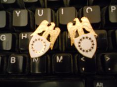 ARMY AIDE TO VICE PRESIDENT OR  COLLAR BRASS SET-