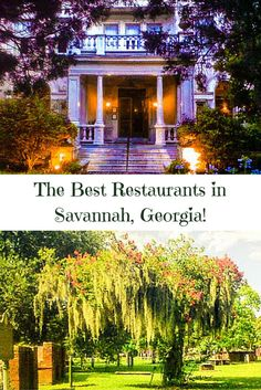 Find out five of the best restaurants in Savannah, Georgia. All of my tastiest travel tips here!