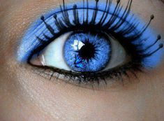 Bluer than blue. Simple and stunning
