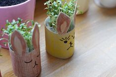 DIY // making cress bunnies out of toilet paper rolls for the Easter decoration – Schwesternliebe & Wir - Dekoration Ideen 2020 Diy Gifts For Kids, Crafts For Kids, Diy Crafts, Easter Crafts, Carton Diy, How To Make Crepe, Homemade Muesli, Toilet Paper Roll, Potpourri