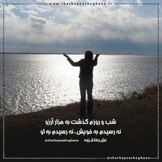 علیرضا قزوه ● شب و روزم گذشت به هزار آرزو نه رسیدم به خویش ، نه رسیدم به او نه سلامم سلام ، نه قیامم قیام نه نمازم نماز، نه وضویم وضو دل اگر نشکند به چه ارزد نماز نه بریز اشک چشم، نه ببر آبرو نه به جانم شرر، نه به حالم نظر نه یکی حسب حال، نه یکی گفتگو نه به خود آمدم، نه ز خود می روم نه شدم سربلند ، نه شدم سرفرو + #علیرضا_قزوه