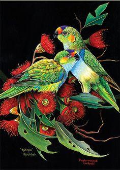 Lorikeet Greeting Card (Set of Australian Plants, Australian Animals, Bird Artwork, Fashion Painting, Exotic Birds, Bird Design, Painting Patterns, Fabric Art, Beautiful Birds