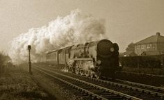 A 'Merchant Navy' Pacific (35013) thunders past Ashley, Hampshire, with a winter 2-hour London express in 1962. Hampshire, England. Negative scan.