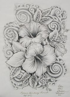 hibiscus drawing | ... drawings surreal 2011 2014 mapanesh pencil and ink drawing of hibiscus